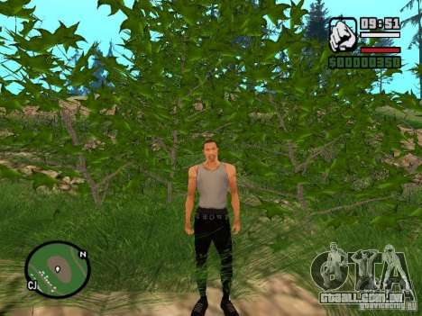 Perfeita realidade para GTA San Andreas