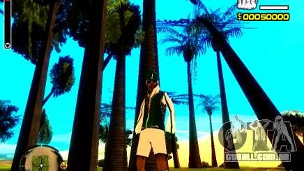 Pele vagabundo v5 para GTA San Andreas