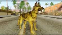 Dog Skin v1 para GTA San Andreas