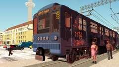Metrophage tipo de 81-717