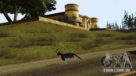 A possibilidade de GTA V para jogar com os anima para GTA San Andreas por diante tela