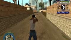 C-HUD by Rifa para GTA San Andreas