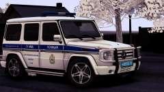 A Mercedes-Benz G55 AMG ГУ МВД