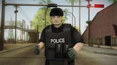 New SWAT Skin