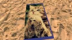 Praia de tapetes com gatinhos para GTA San Andreas