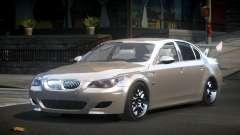 BMW M5 E60 GS